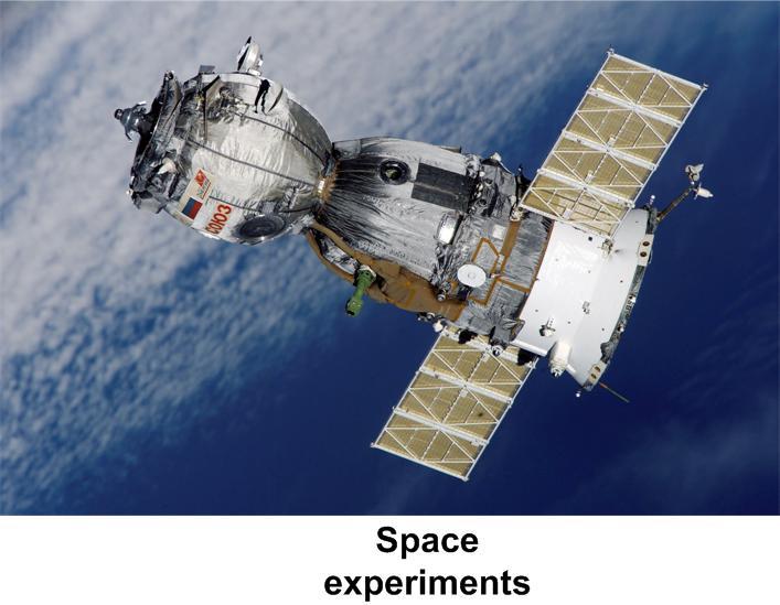 Space sector development